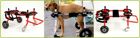 Full body animal wheelchair