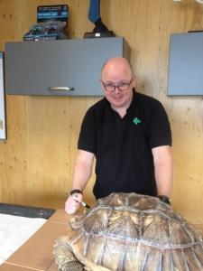 giant tortoise3